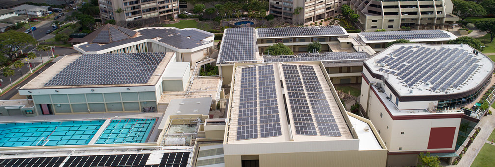 Commercial rooftops with solar cells representing maximizing opportunities in renewable energy with due diligence
